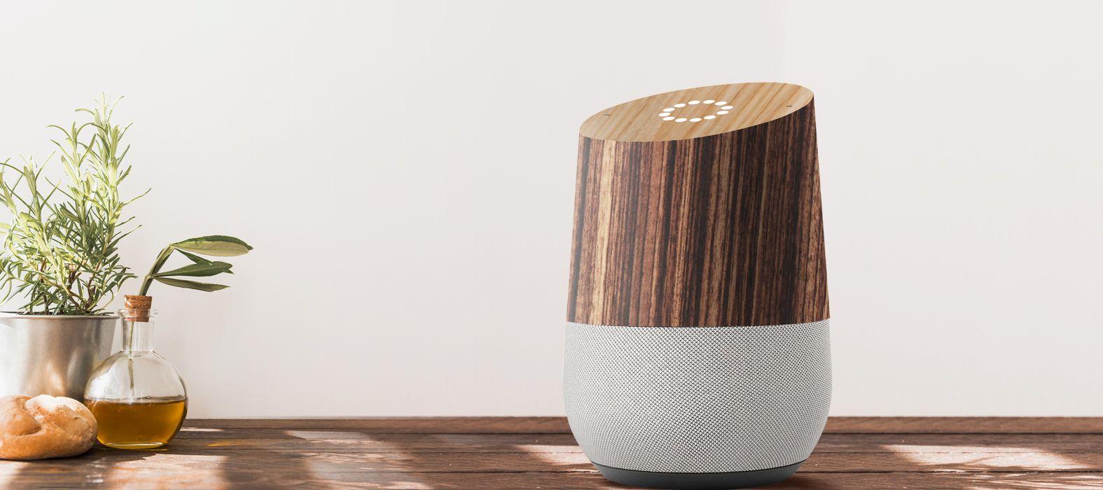 Google Home Zebra Skins